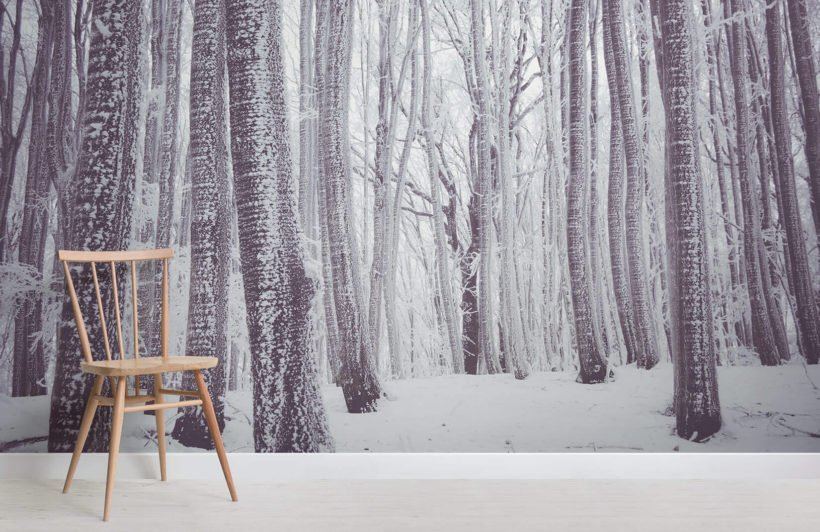 white-forest-forest-room-1-wall-murals