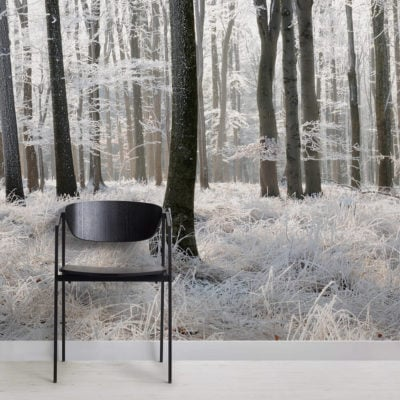 winter-frost-forest-forest-square-1-wall-murals