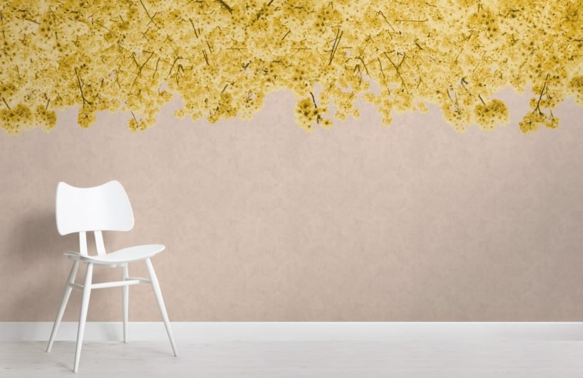yellow sakura cherry blossom tree wallpaper mural